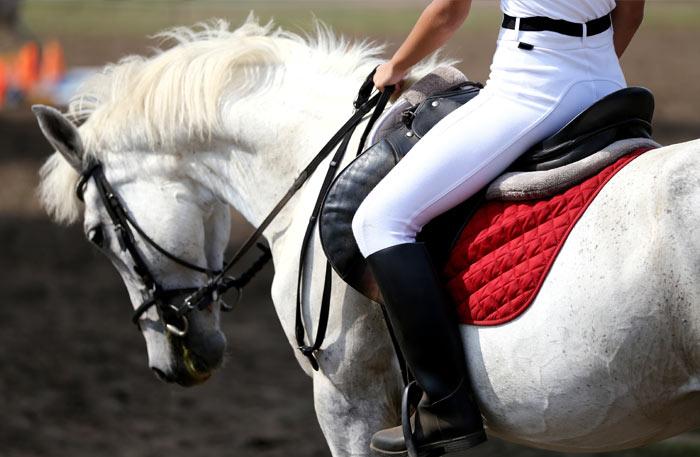 Pony Fellsattel